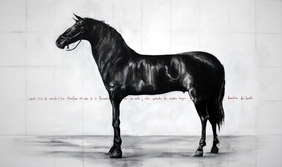 534_alzado lateral de caballo_160x95cm_mixed over linen